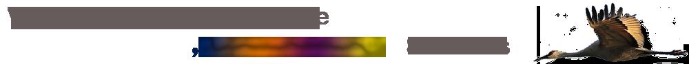 """Volle Halbtagsgrundschule """"Kranichblick"""" Samtens Logo"""